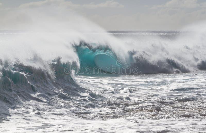 Beautiful breaking Ocean wave in Hawaii royalty free stock image