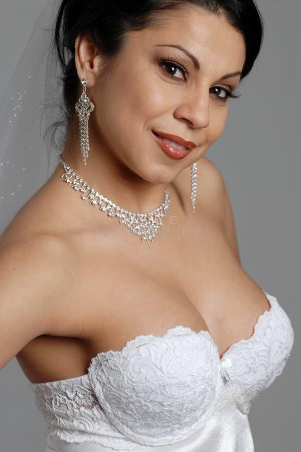 Beautiful Bride. Portrait of a beautiful bride stock images