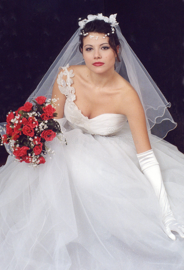 Beautiful bride 2 royalty free stock image
