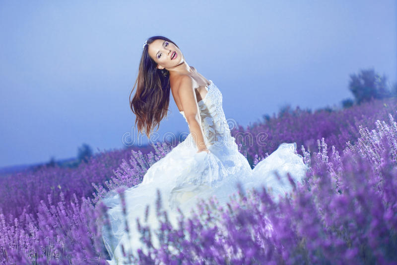 Download Beautiful bride stock photo. Image of evening, happy - 20769952