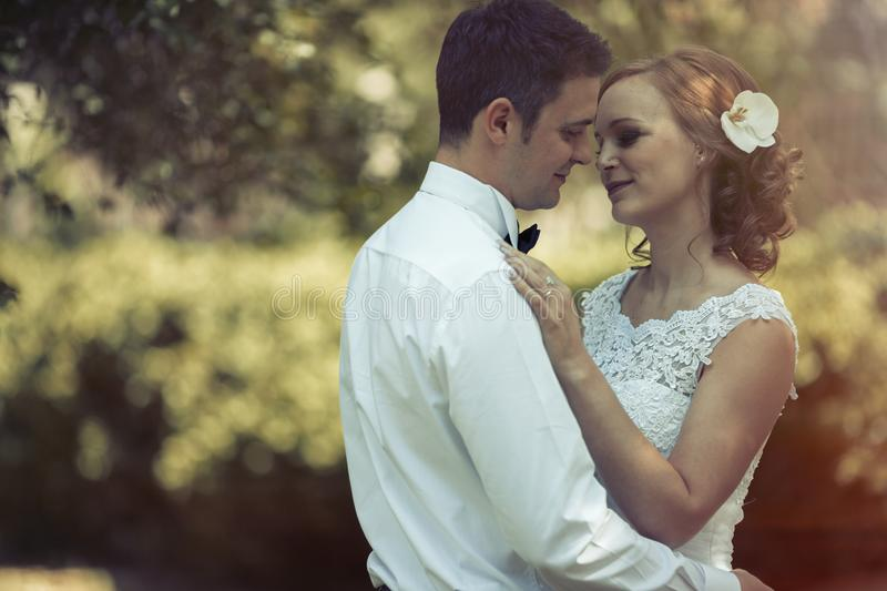 Beautiful bride and groom kissing outdoors stock images