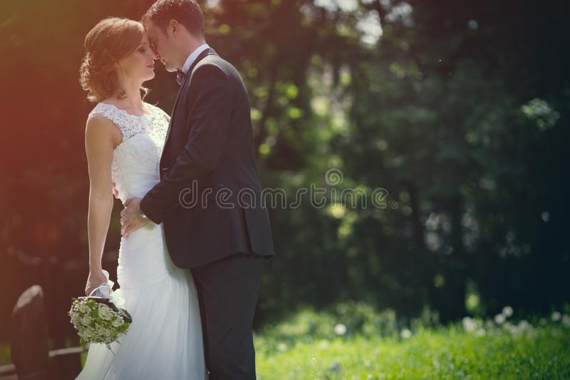 Beautiful bride and groom outdoors stock photos
