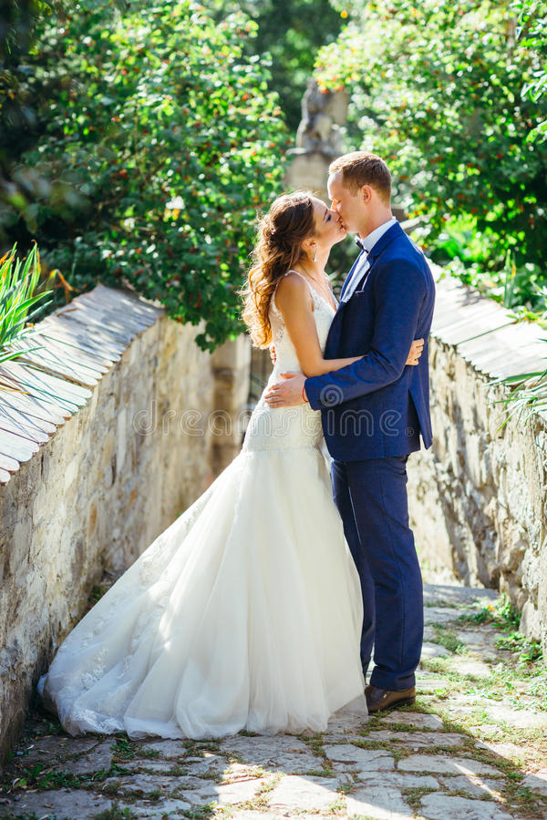 Download Beautiful Bride And Groom Portrait In Nature Stock Image - Image of together, dress: 83721783