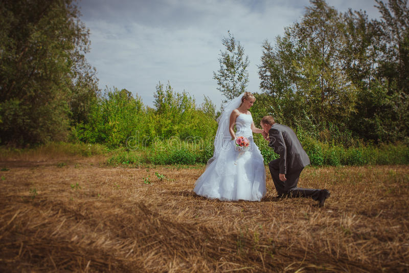 Beautiful bride and groom standing in grass and kissing. Wedding couple fashion shoot. royalty free stock photos