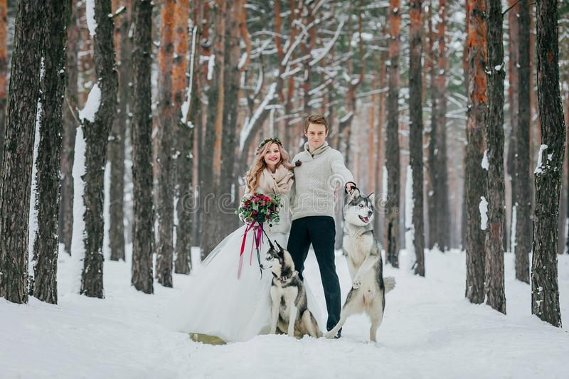 Beautiful bride and groom with two siberian husky are posed on background of snowy forest. Artwork. Copy space royalty free stock photos