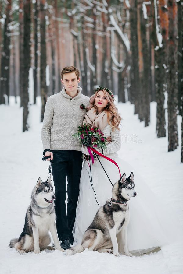 Beautiful bride and groom with two siberian husky are posed on background of snowy forest. Artwork. Copy space royalty free stock photography