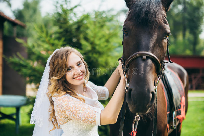 Beautiful bride and a horse in the park stock photography