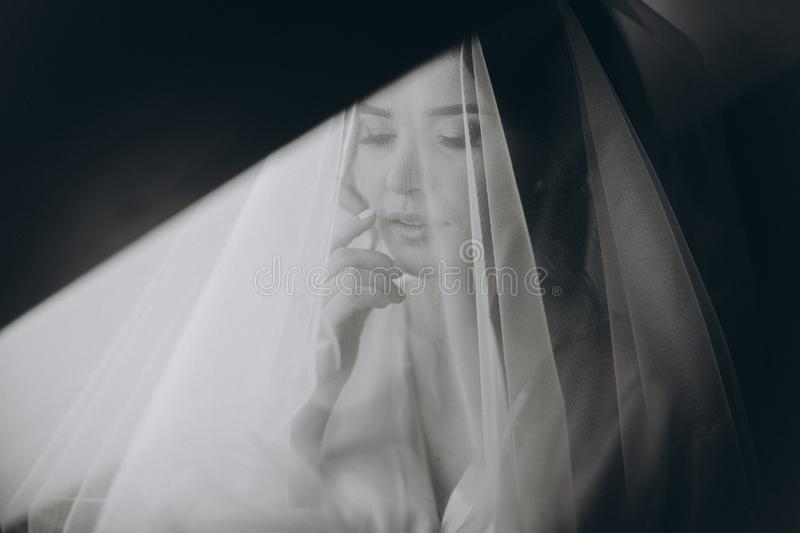 Closeup portrait of young gorgeous bride. Beautiful bride portrait with veil over her face. royalty free stock photos