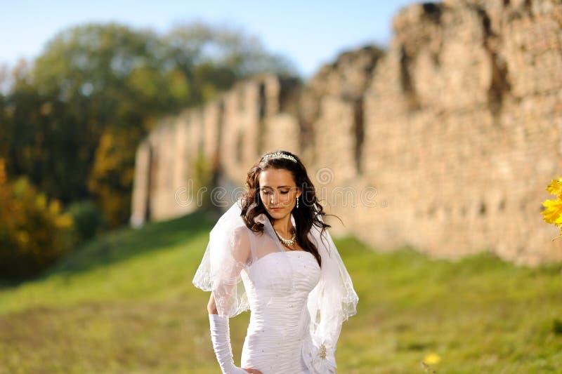 Beautiful bride posing in her wedding day stock photo