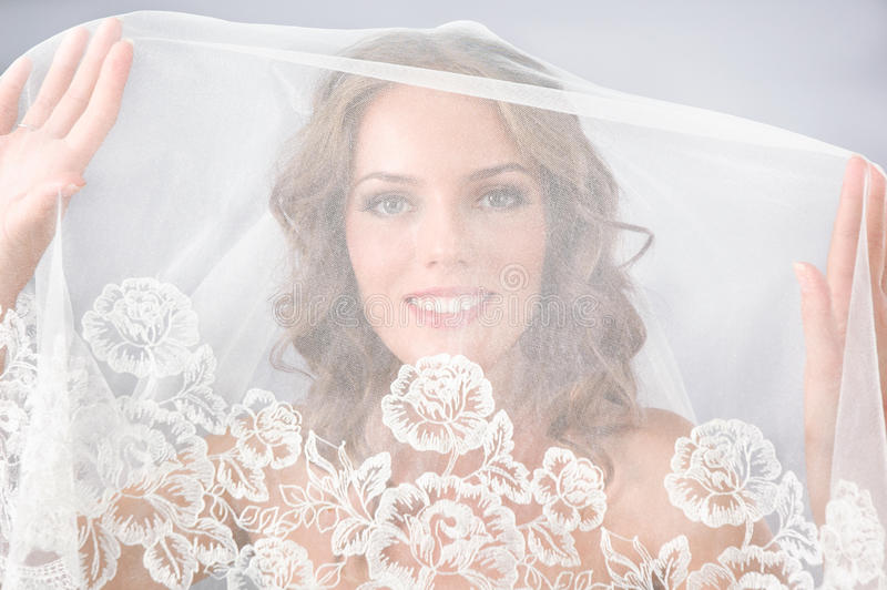 Download Beautiful bride under veil stock image. Image of fashion - 21691335