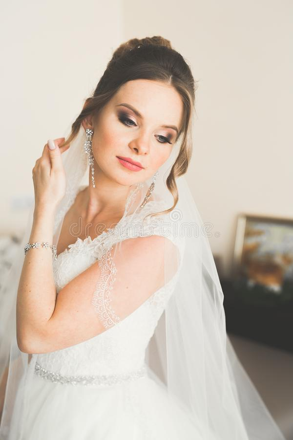 Beautiful bride wearing fashion wedding dress with feathers with luxury delight make-up and hairstyle, studio indoor. Photo shoot stock images