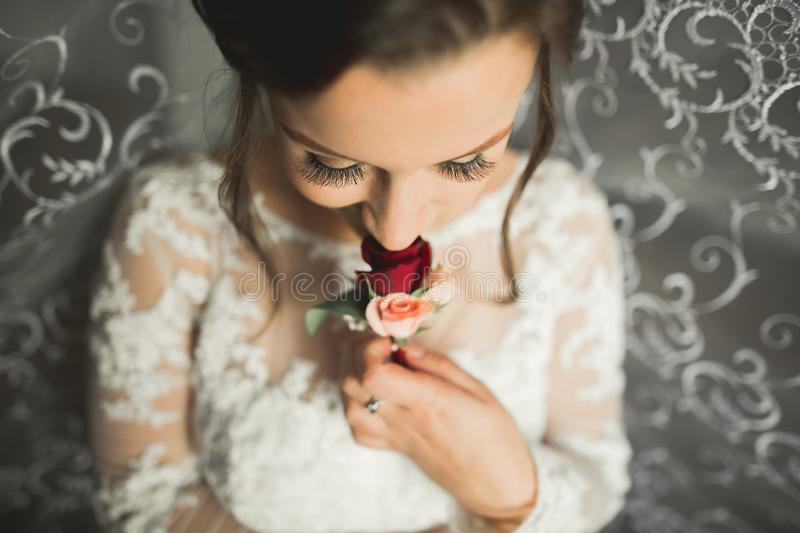 Beautiful bride wearing fashion wedding dress with feathers with luxury delight make-up and hairstyle, studio indoor. Photo shoot stock photos