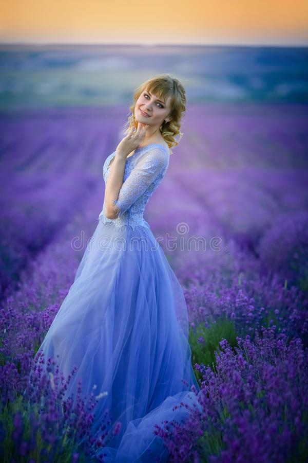 Beautiful Bride in wedding day in lavender field. Newlywed woman in lavender flowers. stock photography