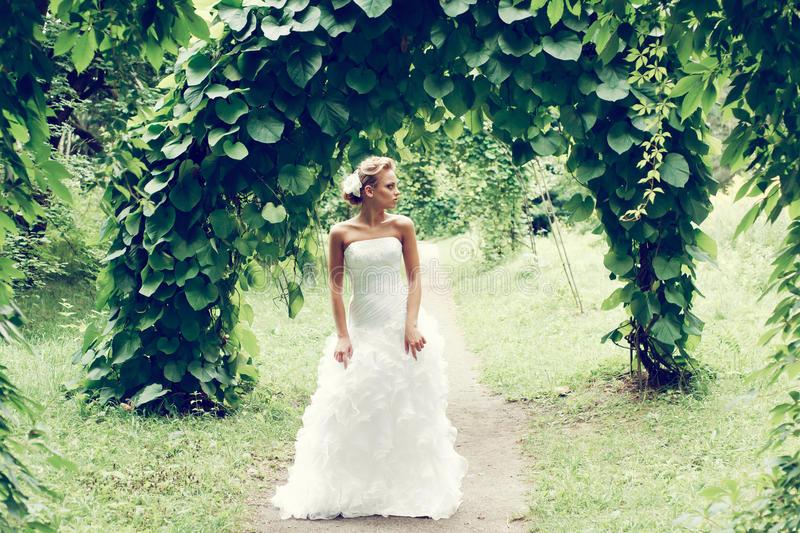 Beautiful bride in white dress. A beautiful bride in the white wedding dress stock photos
