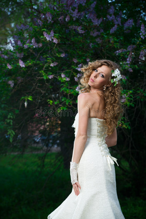 Beautiful bride in a white dress on a lilac background in spring royalty free stock photography