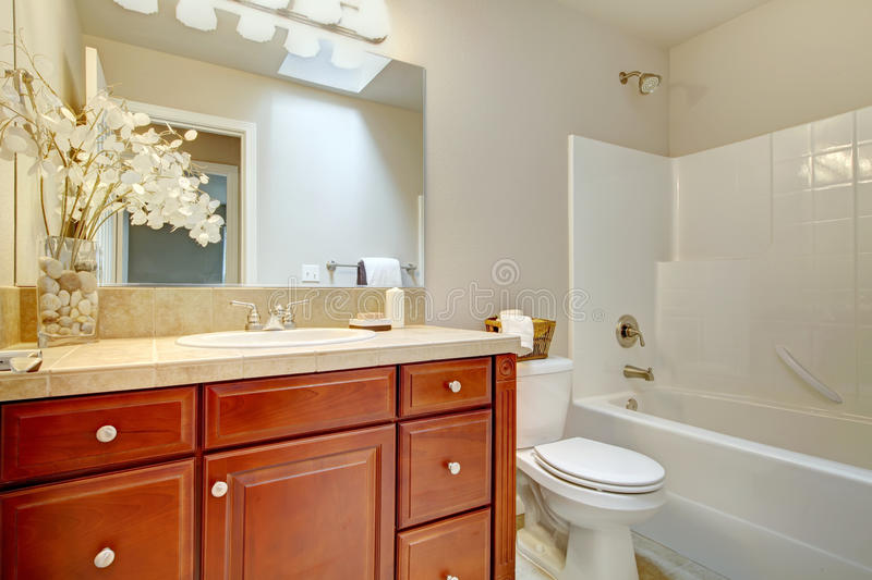 Download Beautiful Bright Bathroom With Cherry Wood Cabinets Stock Image    Image Of Simple, Mirror