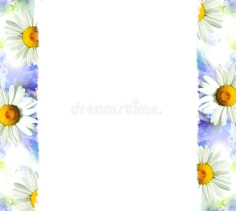 Blue background with white flowers stock image