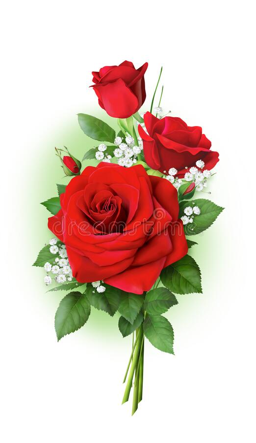A beautiful, bright bouquet of three red roses. royalty free stock images
