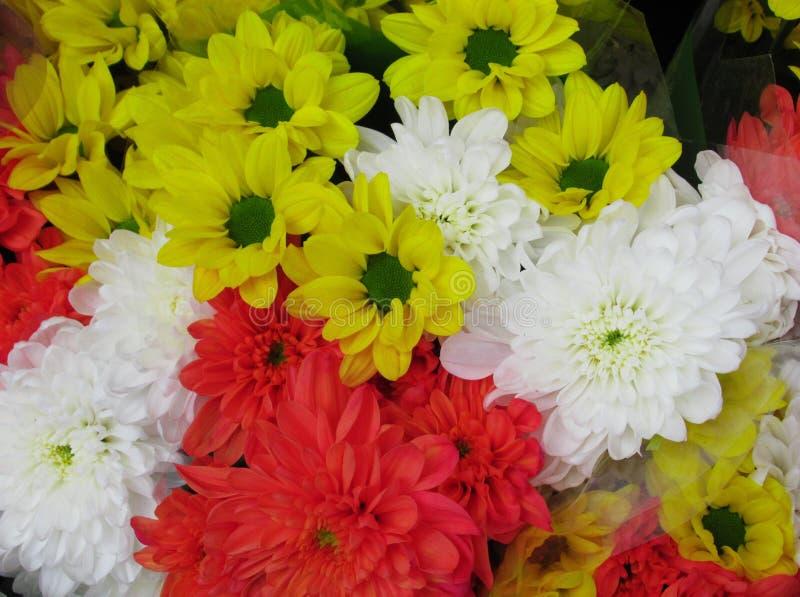 Beautiful Bright Close Up Yellow Daisy And Orange & White Dahlia  Flowers Bouquet. Beautiful Bright Close Up Yellow Daisy And Orange & White Dahlia Flowers royalty free stock photo