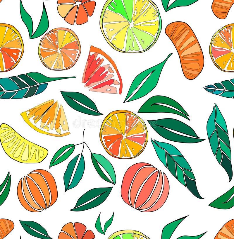 Beautiful bright colorful delicious tasty yummy ripe juicy lovely orange summer autumn dessert slices of oranges and mandarins pat. Tern vector illustration stock illustration