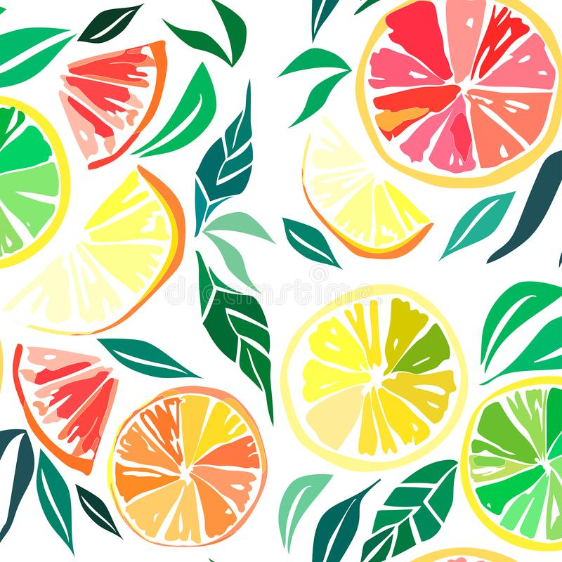 Beautiful bright colorful delicious tasty yummy ripe juicy lovely orange summer autumn dessert slices of oranges and mandarins pat. Tern vector illustration vector illustration