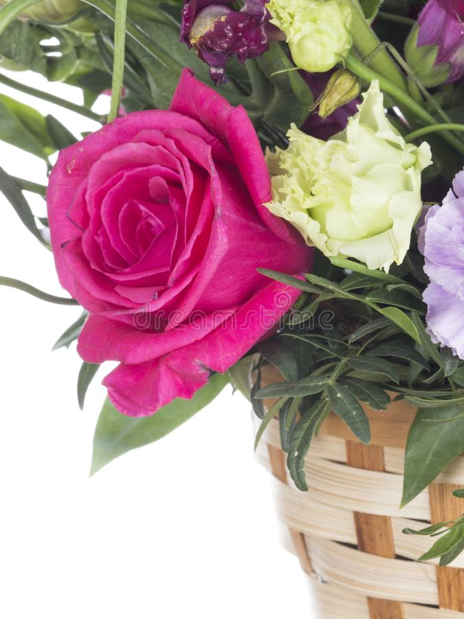 Crimson rose in the basket. Beautiful bright crimson rose in a floral bouquet in a basket on a white isolated background stock photography
