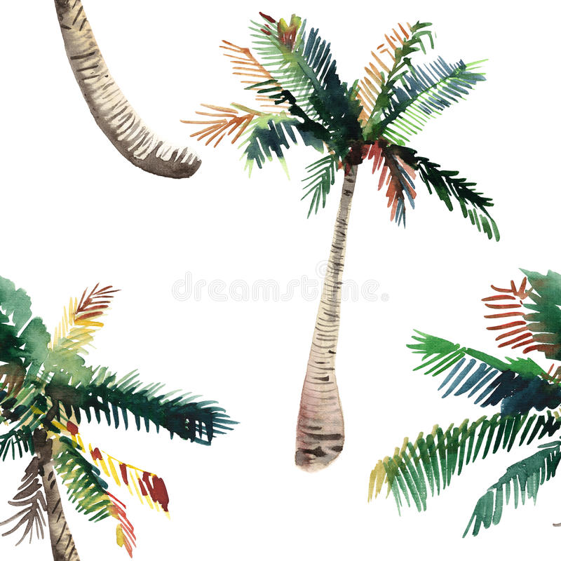 Beautiful bright cute green tropical lovely wonderful hawaii floral herbal summer pattern of a palm trees watercolor hand sketch. Perfect for greetings card vector illustration