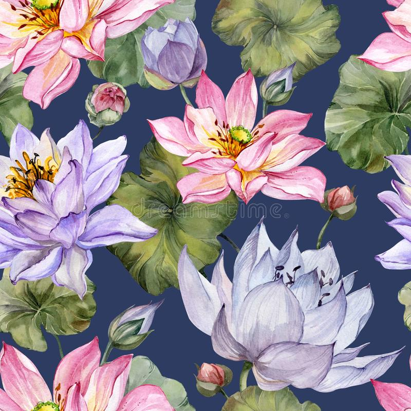 Beautiful bright floral seamless pattern. Purple and pink lotus flowers with bid leaves on dark blue background. Hand drawn illustration. Watercolor painting stock illustration