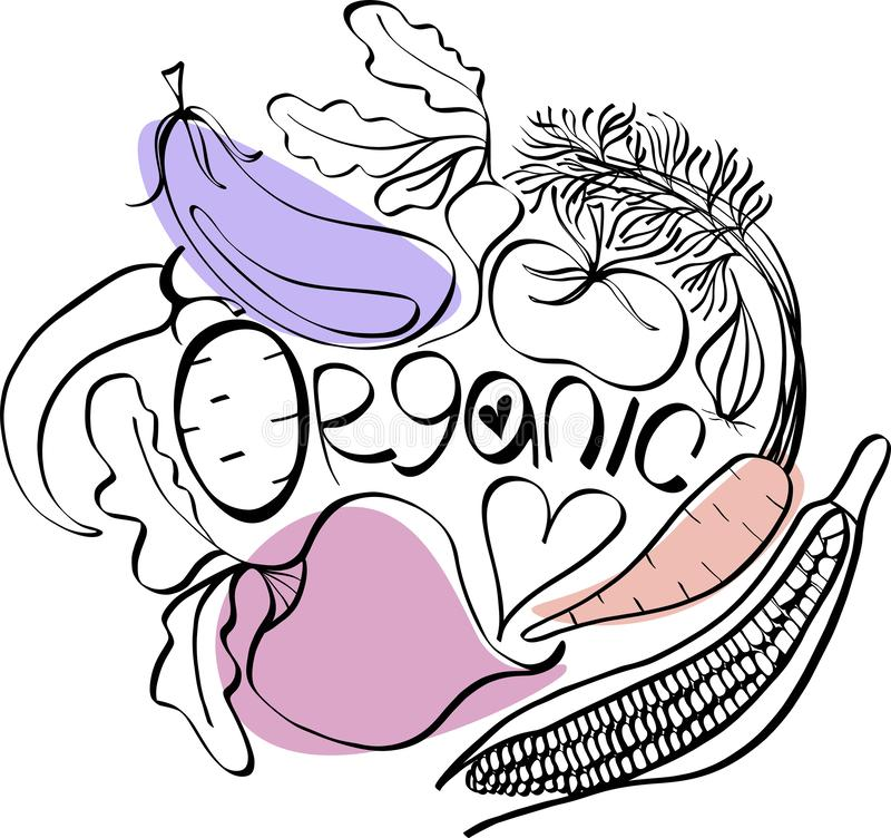 Beautiful bright graphic Scandinavian pattern of organic vegetables: potato, tomato, beetroot, shallot, eggplant, corn, carrot. Vector hand illustration vector illustration