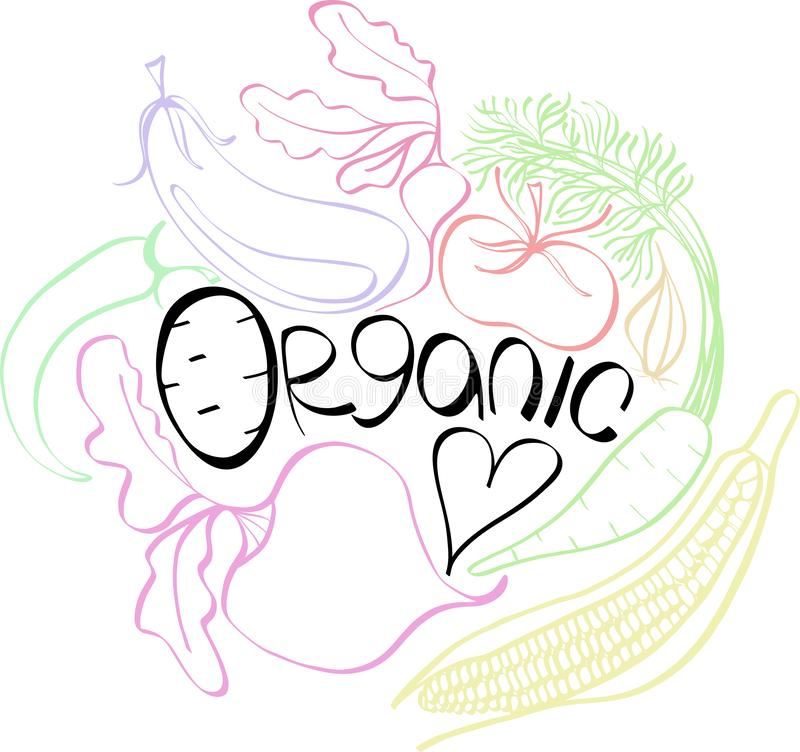 Beautiful bright graphic Scandinavian pattern of organic vegetables: potato, tomato, beetroot, shallot, eggplant, corn, carrot. Vector hand illustration royalty free illustration
