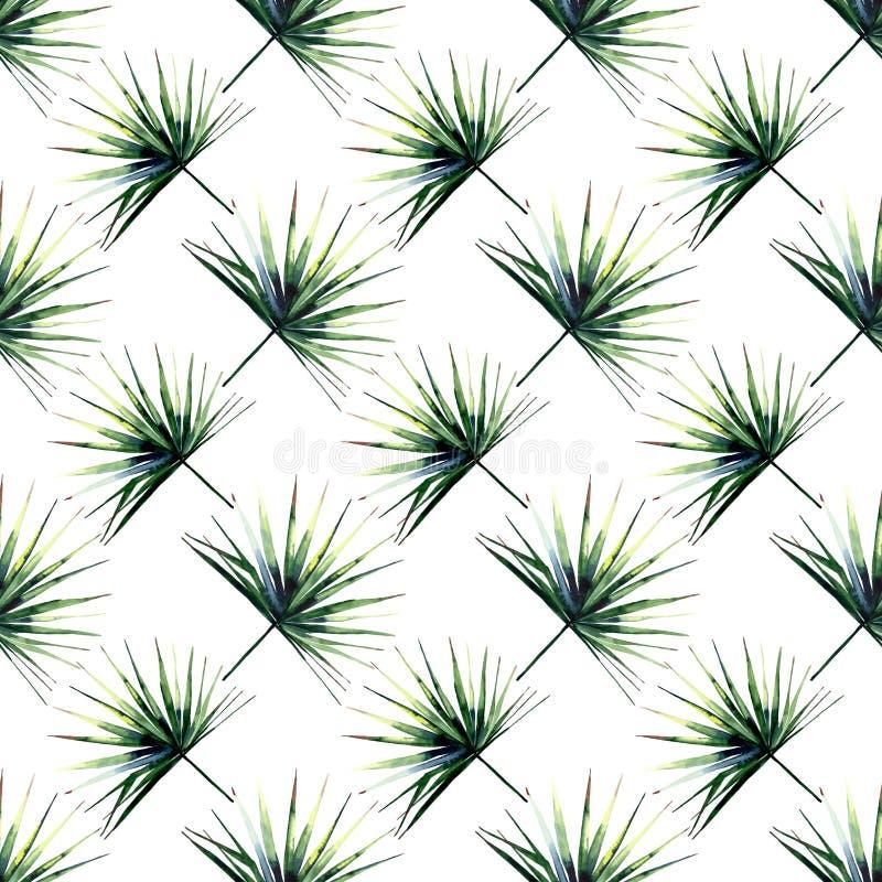 Beautiful bright green tropical wonderful hawaii floral herbal summer diagonal pattern of a palms watercolor vector illustration