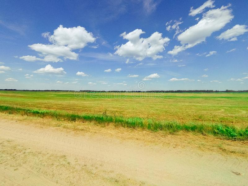 Beautiful bright landscape of the summer field with green grass and trees on the horizon and a bright blue sky with. Clouds royalty free stock image