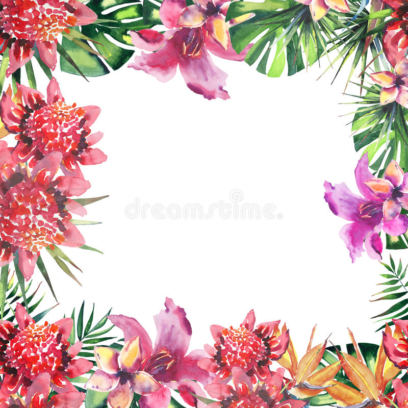 Beautiful bright lovely wonderful green tropical hawaii floral herbal summer colorful frame of tropical flowers and palms leaves w. Atercolor hand sketch vector illustration
