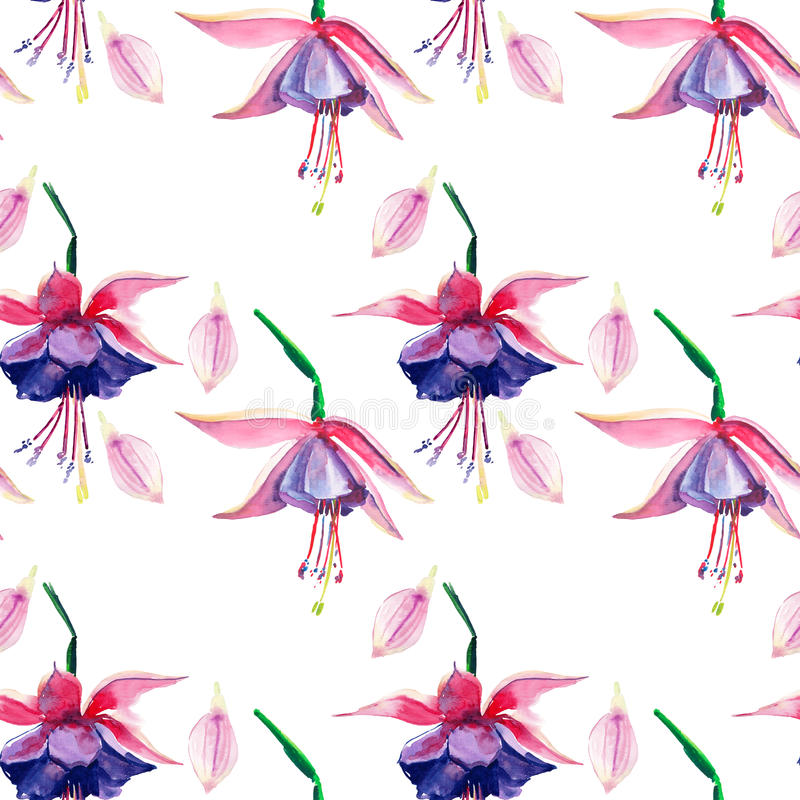 Beautiful bright lovely wonderful green tropical hawaii floral herbal summer colorful pattern of tropical violet flowers orchid wa. Tercolor hand illustration royalty free illustration