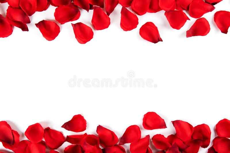 Beautiful bright red rose petals, romantic gesture, background. Happy valentines day oliday sales concept stock image