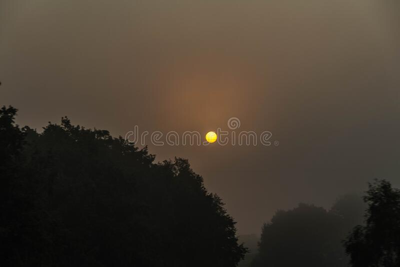 Beautiful bright sunset orange sun disk is on a dark sky. A beautiful bright sunset orange sun disk is on a dark sky royalty free stock photography