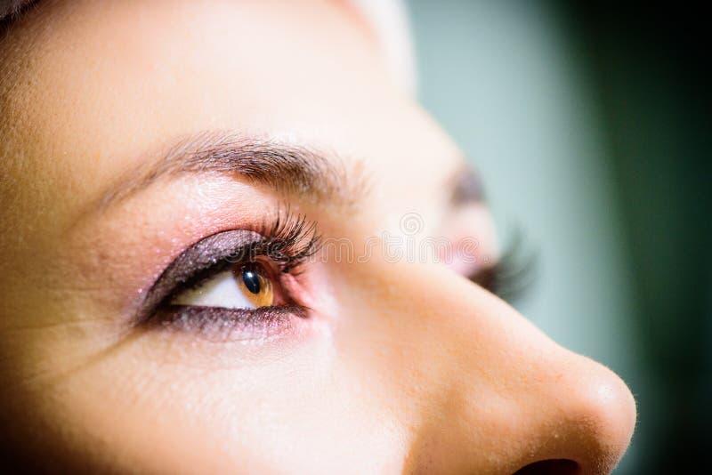 Beautiful brown eye closeup. Makeup fashion eyes. royalty free stock photography