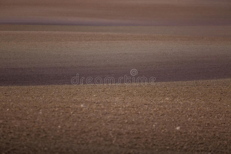 A beautiful brown pattern on a field in spring. Abstract, textured background. Shallow depth of field stock photos