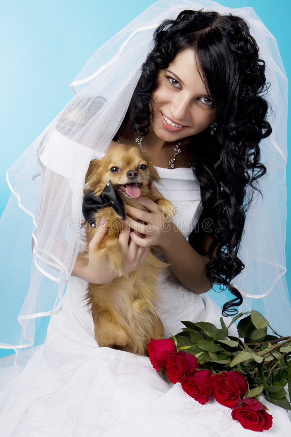 Download Beautiful Brunette Bride With A Dog Stock Image - Image: 8503479