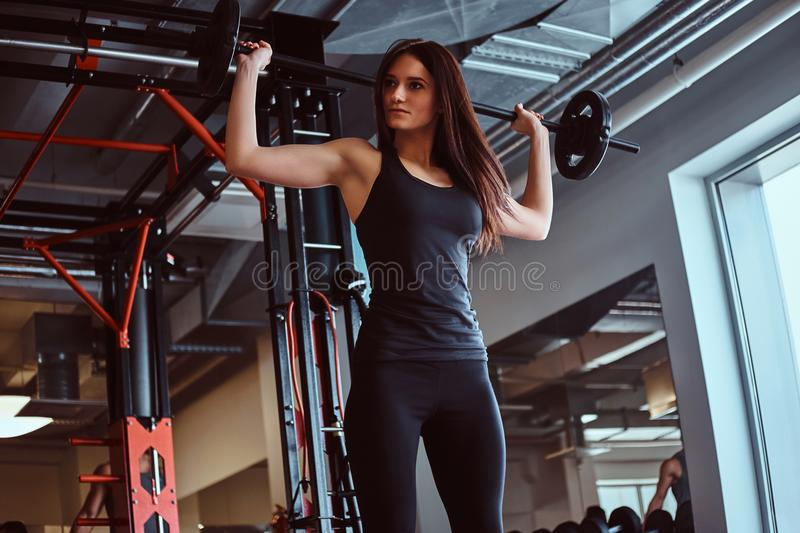 Beautiful brunette female in sportswear holds a barbell while training in a fitness club or gym. royalty free stock images