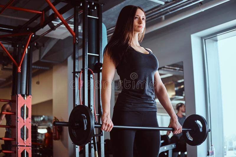 Beautiful brunette female in sportswear holds a barbell while training in a fitness club or gym. royalty free stock photos