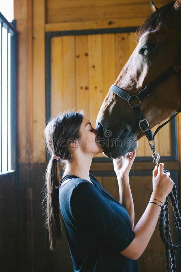 Young woman with horse. Beautiful brunette girl with her horse royalty free stock photos