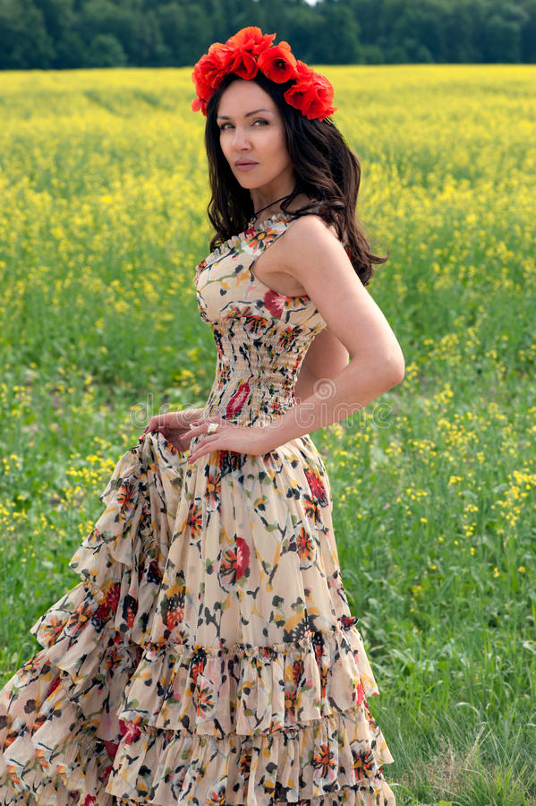 Beautiful brunette girl in poppy filed royalty free stock images