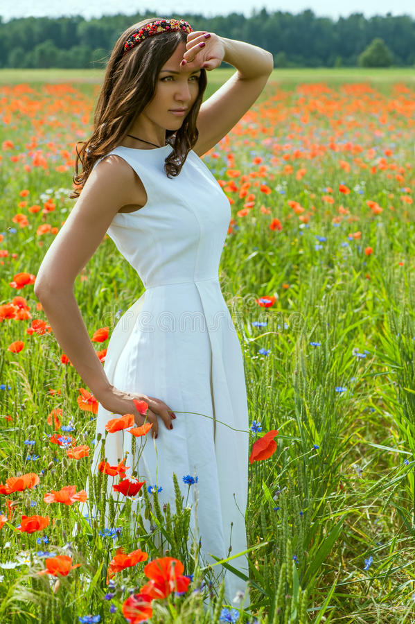 Beautiful brunette girl in poppy filed royalty free stock photo