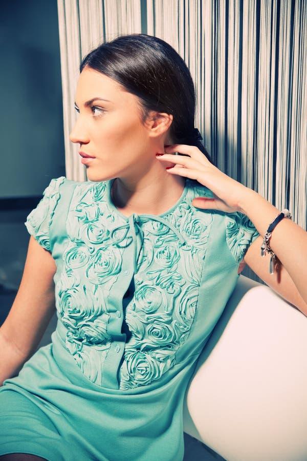 Download Beautiful Brunette In A Stylish Fashion Dress Stock Image - Image: 18431701