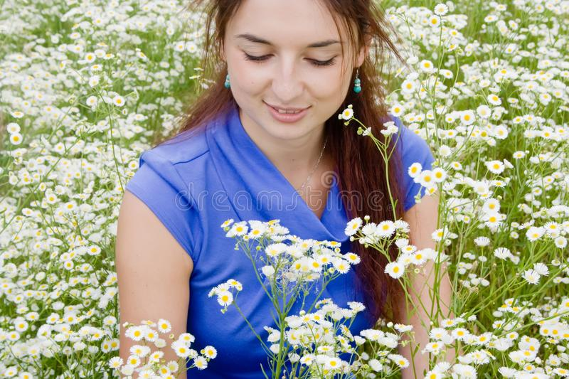 Beautiful woman on a camomile field royalty free stock photos