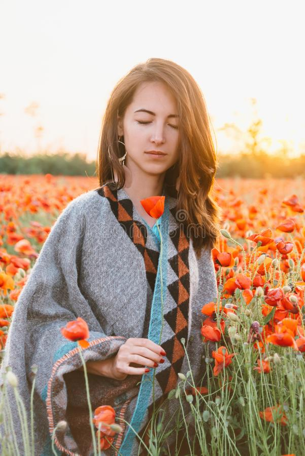 Romantic woman relaxing in poppy field at sunset. stock images