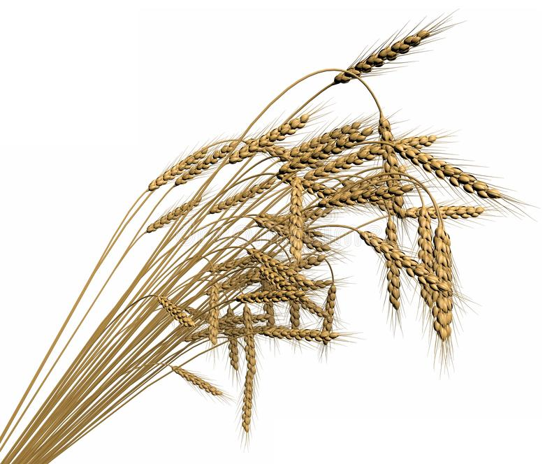 Black Isolated Outline Icon Of Sheaf Of Wheat On White Background...  Royalty Free Cliparts, Vectors, And Stock Illustration. Image 102154849.