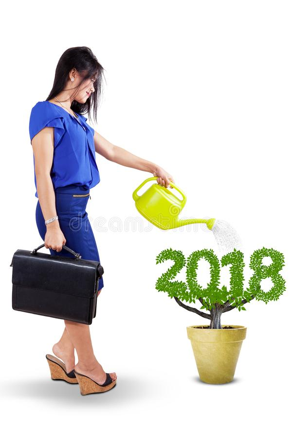 Beautiful businesswoman watering a plant royalty free stock photos