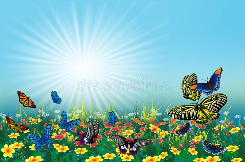 Beautiful butterflies and flowers in wonderful land royalty free illustration